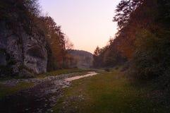 日落在有河的秋天森林里 免版税图库摄影