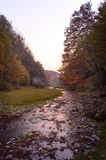 日落在有河的秋天森林里 库存图片