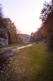 日落在有河的秋天森林里 库存照片