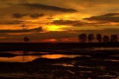 日落在柬埔寨 免版税库存照片