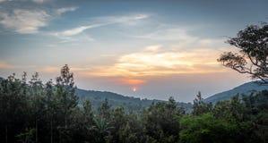 日落在森林上的天空视图 免版税库存照片
