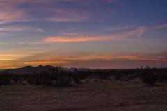 日落在沙漠- 5 库存照片