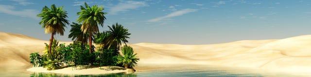 绿洲 日落在沙漠 图库摄影