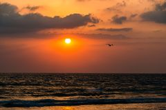 日落在沿海的夏天太阳 库存图片