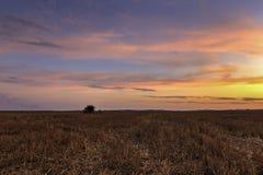日落在浩大的保加利亚 免版税库存图片