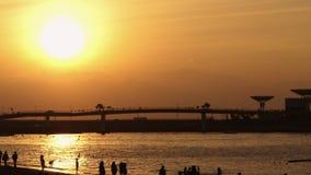 日落在海滩的人群剪影 股票视频
