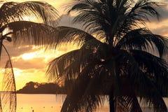 日落在牙买加,加勒比海 免版税图库摄影