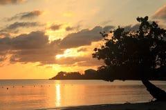 日落在牙买加,加勒比海 库存照片