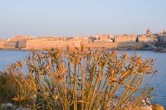 日落在瓦莱塔,马耳他 免版税库存图片