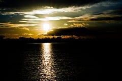 日落在秋天在11月,一种明亮的黄色,棕色和黑颜色 库存图片