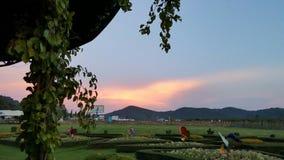 日落在芭达亚,泰国 库存照片