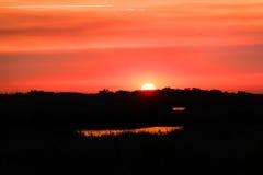 日落在路易斯安那沼泽 免版税图库摄影