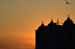 日落在镇里 库存图片