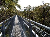 日落在阿尔巴尼澳大利亚西部 免版税图库摄影