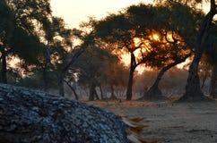 日落在马娜水池国家公园 库存照片