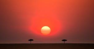 日落在马赛马拉国家公园 闹事 肯尼亚 免版税图库摄影