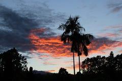 日落在离大岛的附近海岸  免版税图库摄影