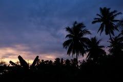 日落在Amphawa 免版税库存照片