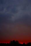 日落在Kanha 免版税库存照片