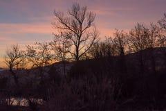 日落在Toscana 免版税库存照片