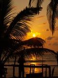 日落在Wadduwa 库存照片