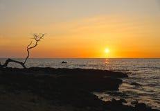 日落夏威夷 库存照片