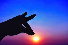 日落天空和剪影手象 免版税图库摄影