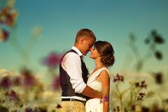 日落太阳的新婚佳偶在反对天空和紫色花的一个领域 免版税图库摄影