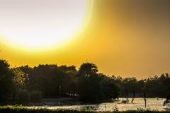 日落摄影 库存图片