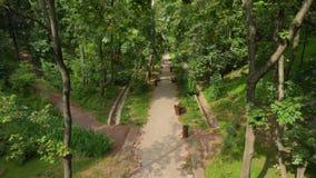 日落时间的城市公园 草地风景和绿色环境公园使用作为自然本底 绿色 股票录像
