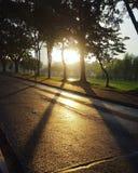日落步行 免版税图库摄影