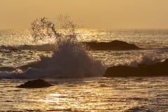 日落波浪飞溅,纽芬兰 免版税库存图片