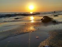 日落海滩挥动海藻 免版税库存照片
