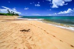 日落海滩奥阿胡岛 免版税库存图片