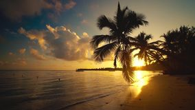 日落热带天堂海岛视图与棕榈树剪影的在海滩和游艇在背景 浮体,晚上 股票录像