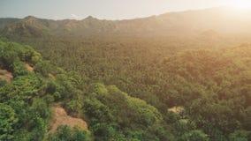 日落焕发的空中寄生虫飞行山森林 股票视频