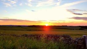 日落牧场地 库存照片