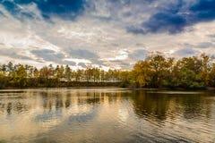日落的一个森林湖 免版税库存图片