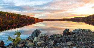 日落的全景在湖森林的 免版税库存照片