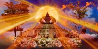 日落的吉达玫瑰园 免版税库存照片