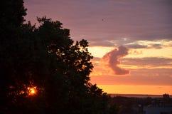 日落的塔林爱沙尼亚老镇 库存图片