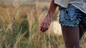 日落的女孩是在与花的秋天领域并且接触高领域草的手 股票录像