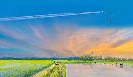 日落的抽象剪影与自行车的在ea 免版税库存图片