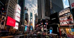 日落的时代广场-纽约,美国 库存图片