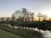 日落的河在沼泽 免版税库存照片