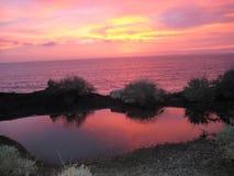 日落的海洋池塘 库存照片
