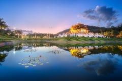 日落的清迈皇家植物群Ratchaphruek公园 图库摄影