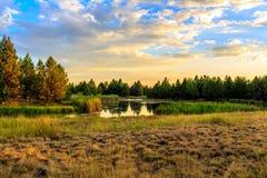 日落的湖边栖所 库存照片