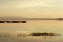 日落的湖 免版税库存图片
