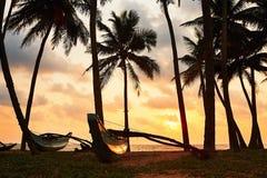 日落的热带海岛 免版税库存图片